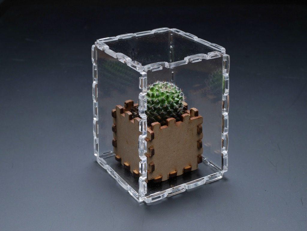 透明アクリルケース68×128×68サイズの中にMDF製の組立て式小型ケースにミニサボテンを飾ってみました。 分解が簡単なので、中身の入れ替えがとても楽チンです。